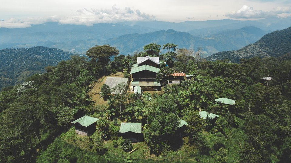 Volunteer in the Cloud Forest
