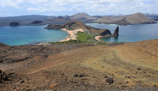 Galapagos Volunteer