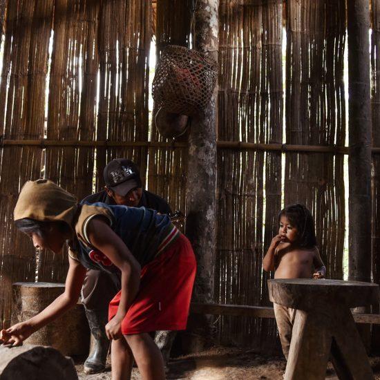 Shuar Amazon Community